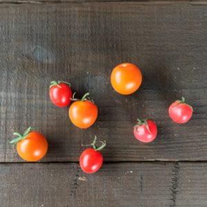 カラフルミニトマト