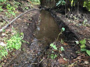 掘り終えたプール