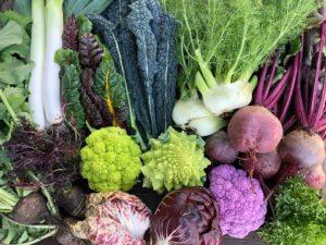 秋冬の彩り野菜