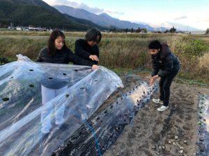 畑作業を手伝ってくれる友達のネパール人